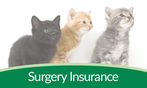 Surgery Insurance